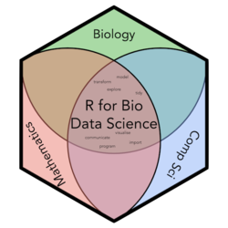 R for bio data science hex logo quadratic small.png