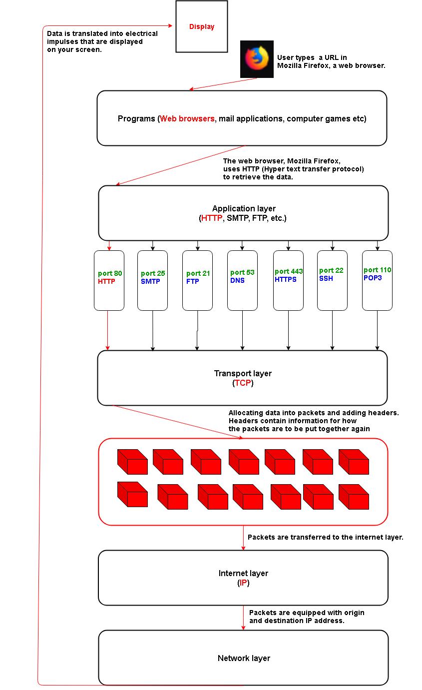 Understanding network and remote servers: IP/URL, ssh, scp
